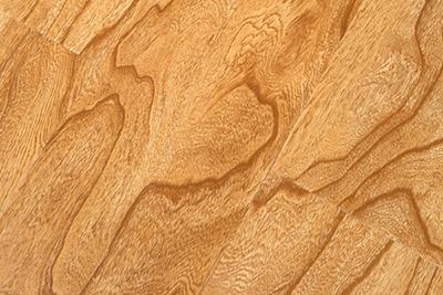 强化复合地板榆木仿古YM601